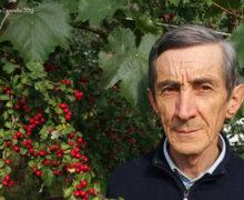 Il rispetto rigoroso della stagionalità alimentare del regno vegetale resta l'arma primaria per la prevenzione del cancro.
